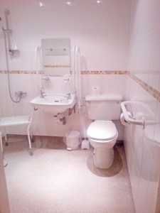 Accessibility Bathroom 1