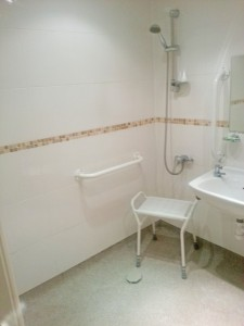 Accessibility Bathroom 2